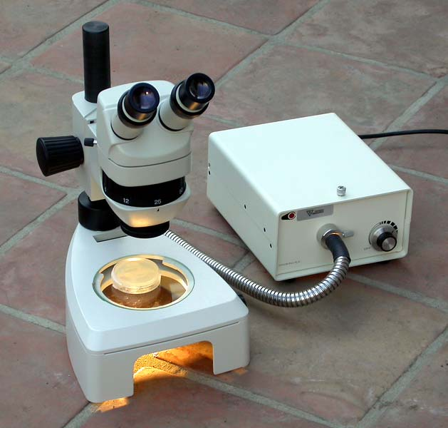 Smt1 Stereo Microscope System W Optics And Illumination