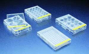 Image for Tissue Culture Plates coming soon