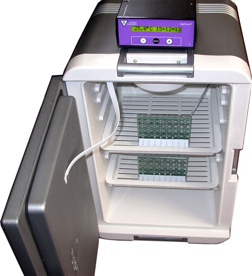 DigiTherm(R) CircKinetics(TM):  Ideal Drosophila Activity Monitoring Incubator For Circadian Research!
