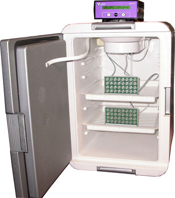 DigiTherm® CircKinetics™:  Ideal Drosophila Activity Monitoring Incubator For Circadian Research!