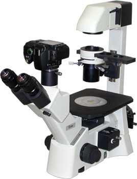 Inverted Compound Epi-fluorescence Microscope